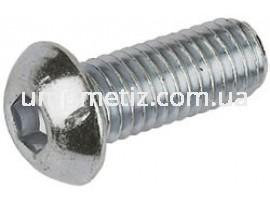 Винт с полукруглой головкой и внутренним шестигранником M10*16 10.9 цинк белый ISO 7380